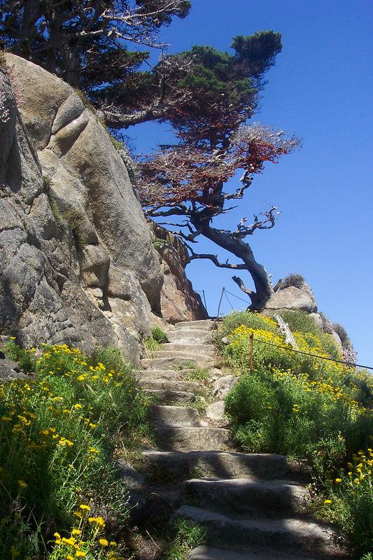 Califorrnia Travels